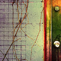 The Door The Wall And The Weeds by Tara Turner