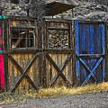 The Doors by Lou  Novick