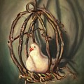 The Dove by Randy Burns