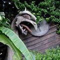 The Dragon In The Garden by Rachel Kaufmann