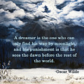 The Dreamer by Mary Palmer