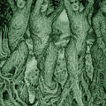 The Dryads by Debra A Hitchcock