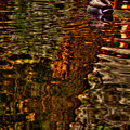 The Duck Pond by David Patterson