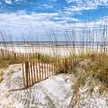 The Dunes Special by Debra and Dave Vanderlaan