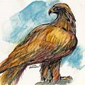 The Eagle Drawing by Angel Ciesniarska