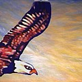 The Eagle Or The Great Thunderbird Spirit In The Sky by Kimberlee Baxter