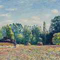 The Edge Of The Forest 2 by Alfred Sisley
