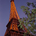 The Eiffel Tower Aglow by Nadine Rippelmeyer