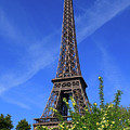 The Eiffel Tower In Spring by Louise Heusinkveld