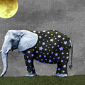 The Elephant And The Moon by Susan Newcomb