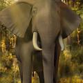 The Elephant by Emma Alvarez