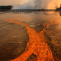 The Enchantment Of Grand Prismatic Spring by Teresa Zieba