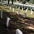 Arlington Tombstones Shade And Light by Cora Wandel