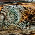 The Eye In The Wood by Norman Gabitzsch