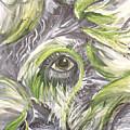 The Eye by Jessica Kauffman