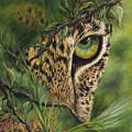 The Eye by Myra Goldick