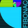 The Fibonacci Equation Catus 1 No. 2 V B by Gert J Rheeders