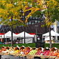 The Fall Harvest Is In Kendall Square Farmers Market Foliage by Toby McGuire