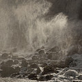 The Falls Of Niagara Bw by Theo O'Connor