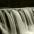 The Falls by Timothy Johnson