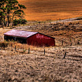 The Farm by David Patterson