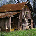 The Farm by Teresa Mucha