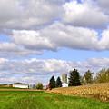The Farmers Fields by Penny Neimiller