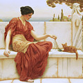The Favorite by John William Godward