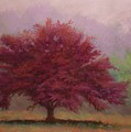 The Feather Tree by Paula Ann Ford