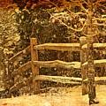 The Fence by John Prickett