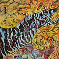 The Fierce Eel by Heather Lennox