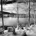 The First Snow On West Lake by David Patterson