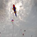 The Fish Fly Over The Jockeys' Ridge by Robert Ponzoni