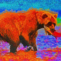 The Fishing Bear - Da by Leonardo Digenio