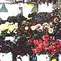 The Flower Market by James Johnstone