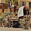 The Flowering Wagon by Ann Boulais
