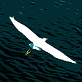 The Flying Egret by David Lee Thompson