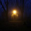 The Foggiest Idea 3 by Eric Curtin