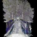 The Foot Bridge by Tim Allen