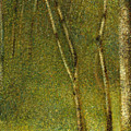 The Forest At Pontaubert, 1881 by Georges Pierre Seurat
