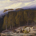 The Forest Of Valdoniello, Corsica by Edward Lear
