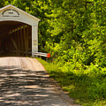 The Forested Newport Covered Bridge by Adam Jewell