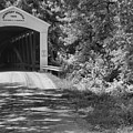 The Forested Newport Covered Bridge Black And White by Adam Jewell