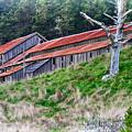 The Forgotten Barn by Robert Ploen