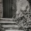 The Forgotten Door by Teresa Wilson