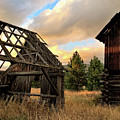 The Forgotten Dreams 10 by Victor K