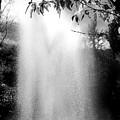 The Fountain  by Lois Braun
