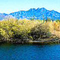 The Four Peaks From Saguaro Lake by Barbara Zahno