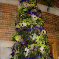 The French Thistle Tree Fashions For Evergreens Hotel Roanoke 2009 by Teresa Mucha