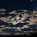 The Full Buck Moon by Yuri Lev